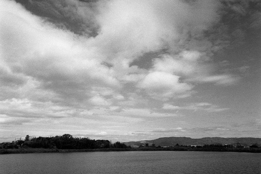 薬師寺が見える池