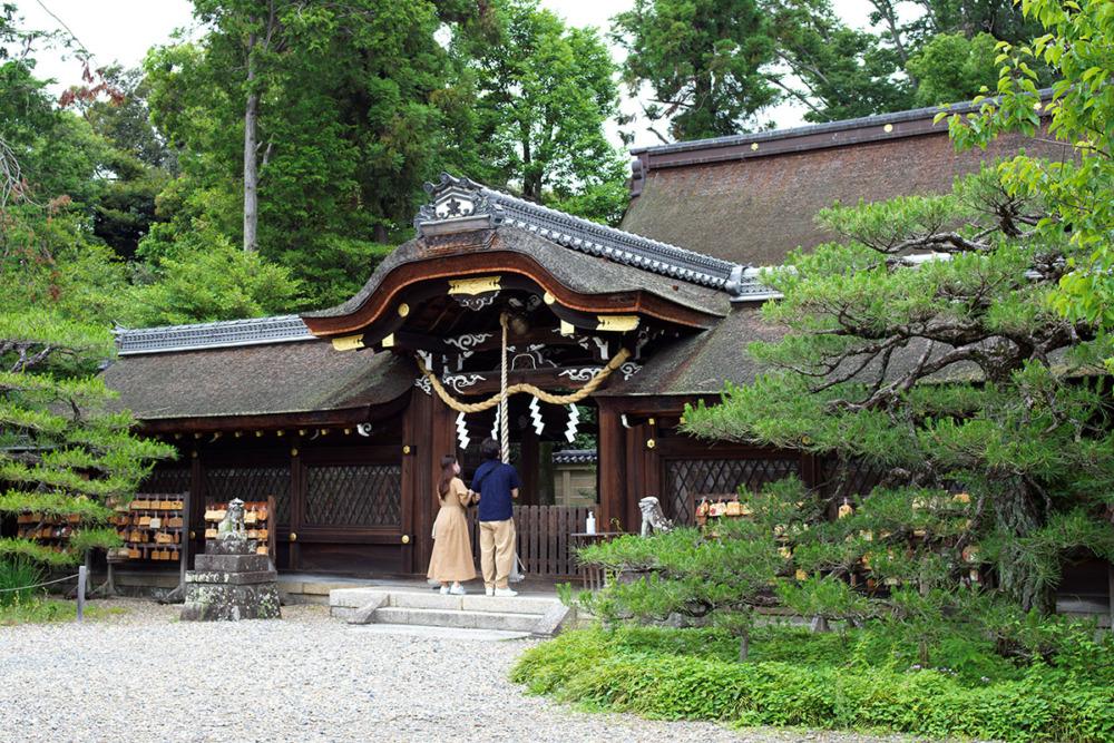 京都市の梅宮大社に菖蒲を撮りに行った/ハッセルブラッド500CM