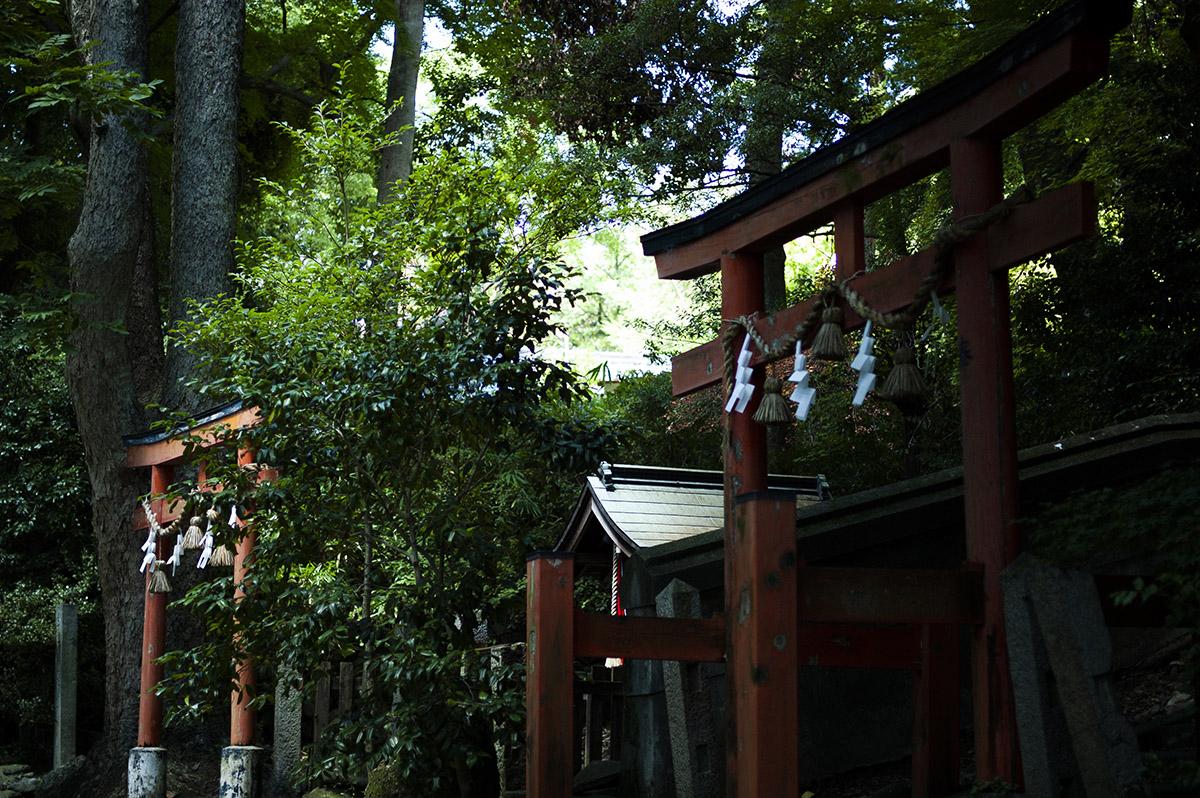 大阪府池田市の伊居太神社に撮影を兼ねて行ってきました