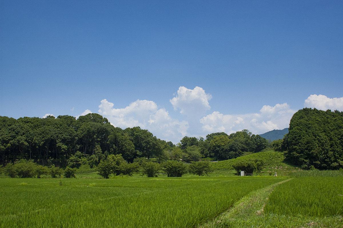 奈良県明日香村のキトラ古墳の大きさとは?撮影を兼ねて行ってきました