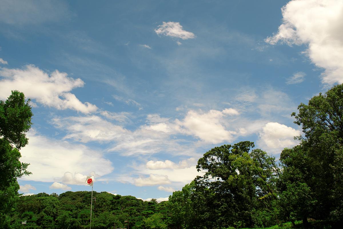 大仙公園をウォーキングしながら古墳の写真を撮りにいきました